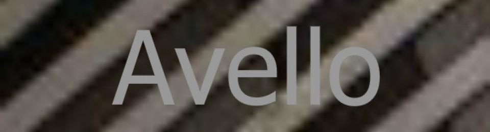 Avello Publishing